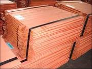 Copper and recycled copper waste sale