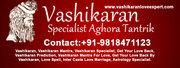 Famous astrologer in  mumbai
